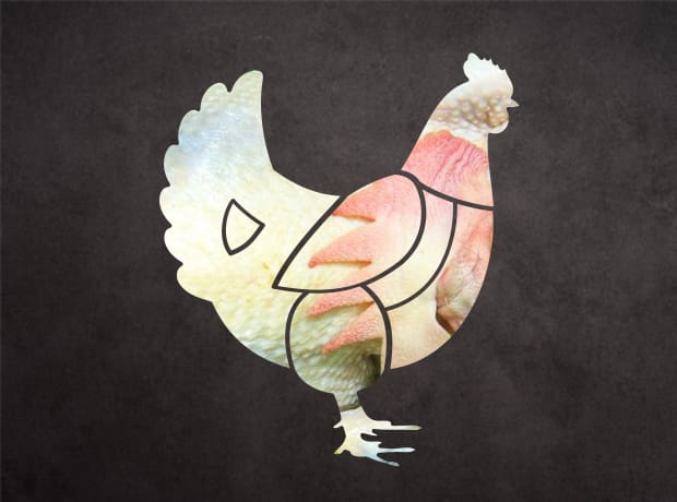 雞肉集合部位-全雞
